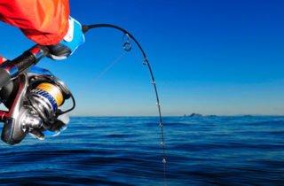 Hervey Bay Fishing in Spring