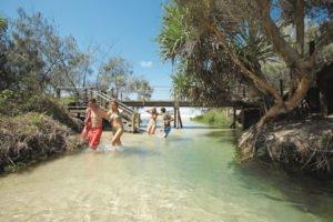 Fraser Island Creek